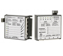 BAS Ethernet Switches  EIBA Switches